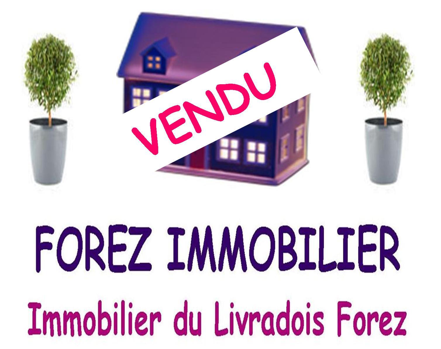 Vente maison/villa 7 pièces celles sur durolle 63250